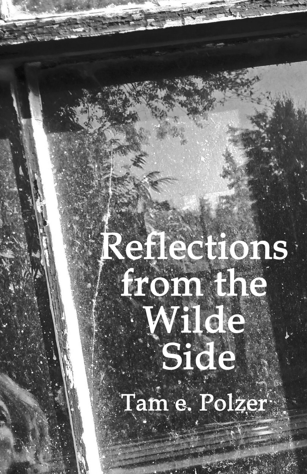 Reflections from the Wilde Side $18.00/5.99 on Amazon